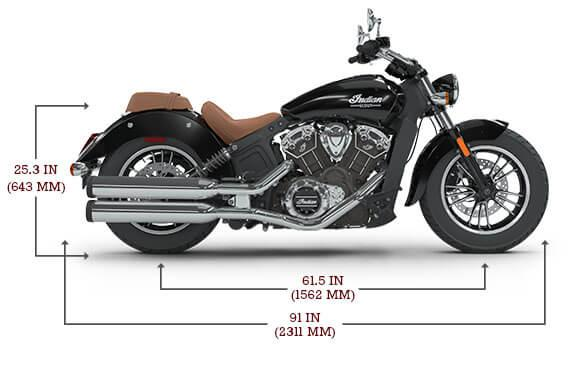 Indian Scout, Brilliant Blue